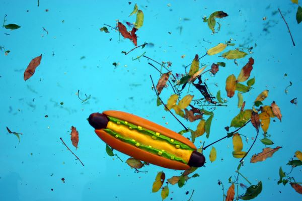 hot dog with leaves, in pool