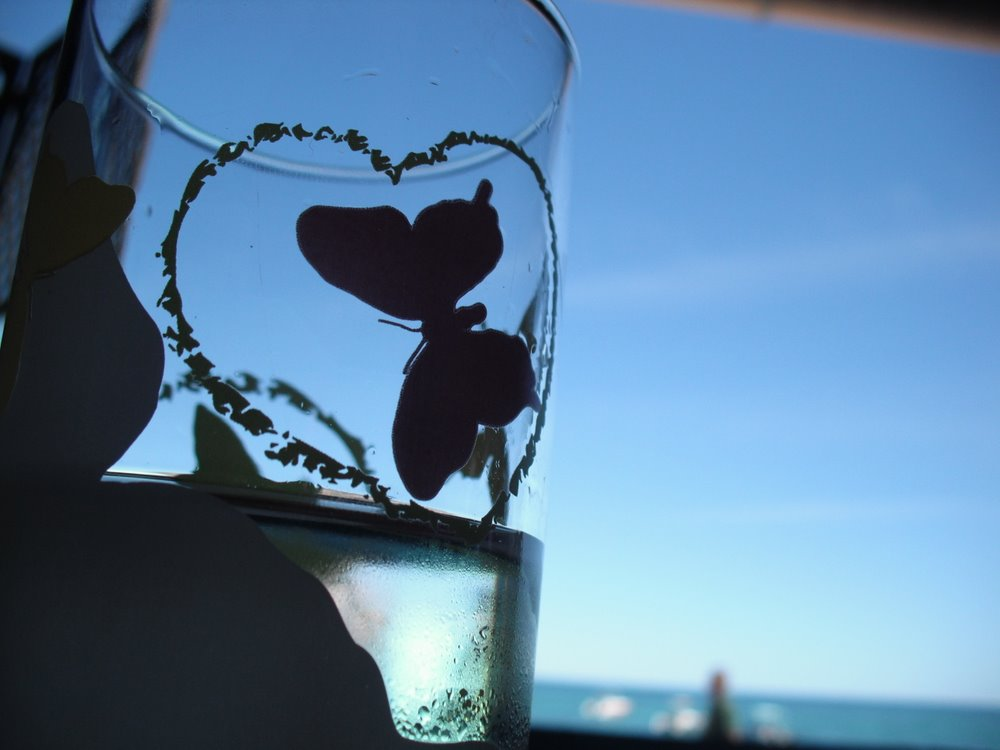 Butterfly in glass
